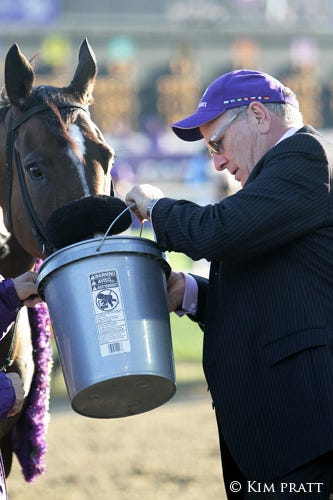 The 2011 Breeders Cup A Photo Album Daily Racing Form