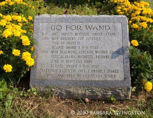 Remembering Wanda Daily Racing Form