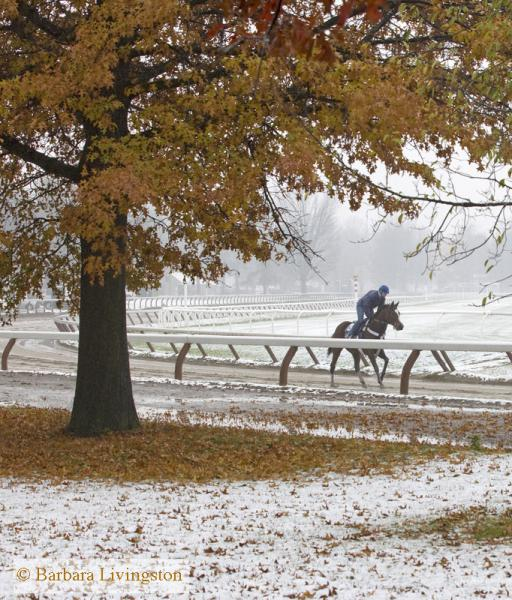 Snow Day At The Oklahoma Training Track Daily Racing Form
