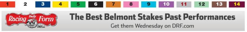 Belmont Stakes PPs