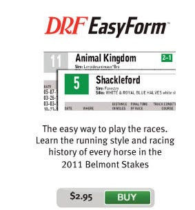 Belmont Stakes EasyForm PPs