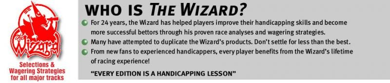 The Wizard horse picks