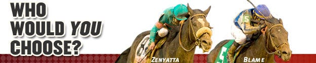 Zenyatta Blame 2010 Horse of the Year